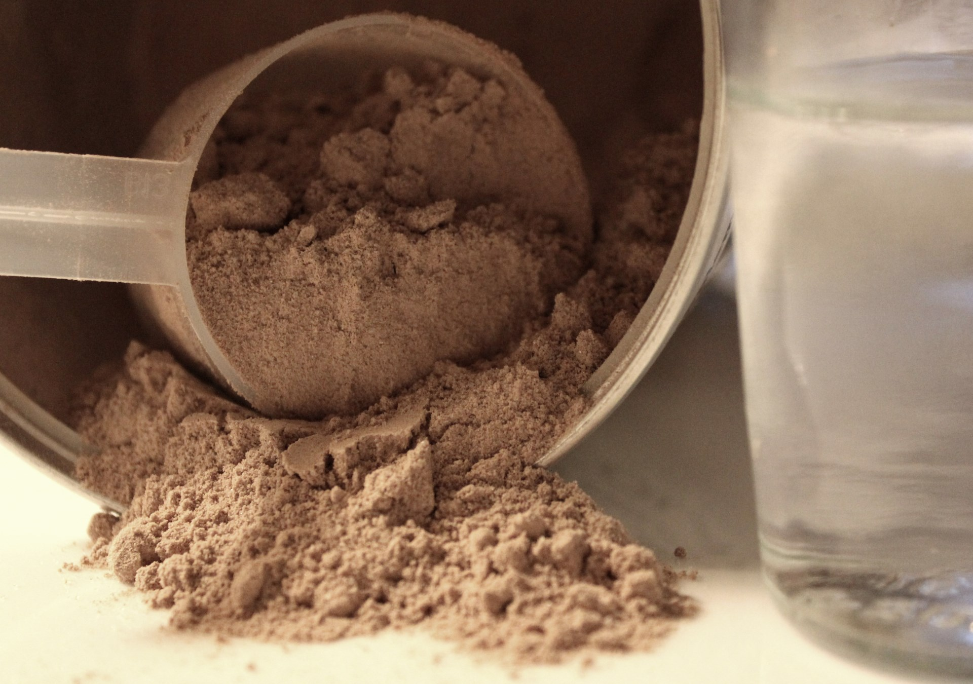 cheap protein powder
